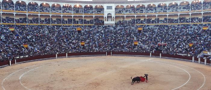 Paso Doble on tants, mis kirjeldab härjavõitlust.
